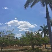 Costa_Rica_Lagos_de_Palma_Landscape