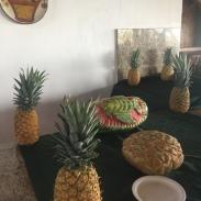 Rinjon_De_La_Vieha_Costa_Rica_excursion_adventure_tour