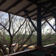 Rinjon_De_La_Vieha_Costa_Rica_excursion_adventure_tour_treetop_lunch