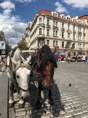 Old Town Carriages
